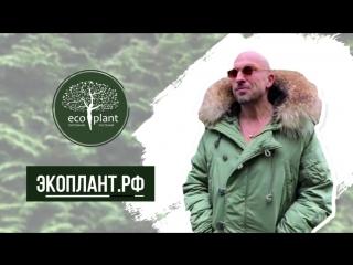 Дмитрий Нагиев рекомендует Экоплант!