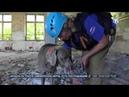 Сюжет ТРК Миллет Спец. «РОССОЮЗСПАС» провели тренировку по аттестации служебных собак