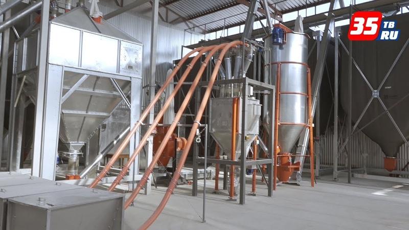 Современный цех по производству комбикормов открыли на базе СХПК «Присухонское» в Вологодском районе