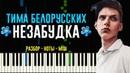 Тима Белорусских Незабудка На Пианино Ноты