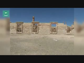 Сирия: ФАН публикует видео из освобожденной Пальмиры