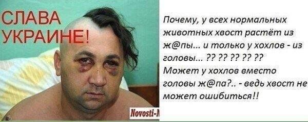https://pp.userapi.com/c845523/v845523736/31ca2/uwktdiyxZik.jpg
