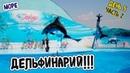 ДЕЛЬФИНАРИЙ ОСКАР ДЕЛЬФИНЫ Кирилловка Азовское море Часть 2 ШОУ ДЕЛЬФИНОВ