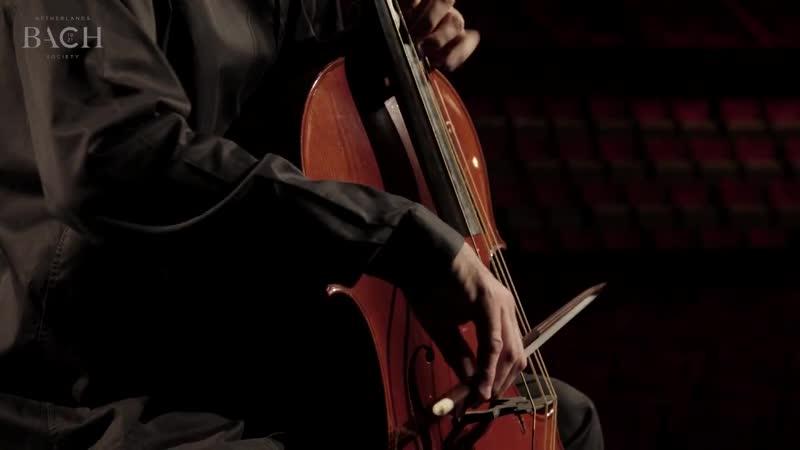 1010 a J. S. Bach - Cello Suite No.4 in E-flat major, BWV 1010 - Bruno Cocset - AoB