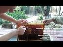Культиватор для распечатки пчелиных сот v 2 0