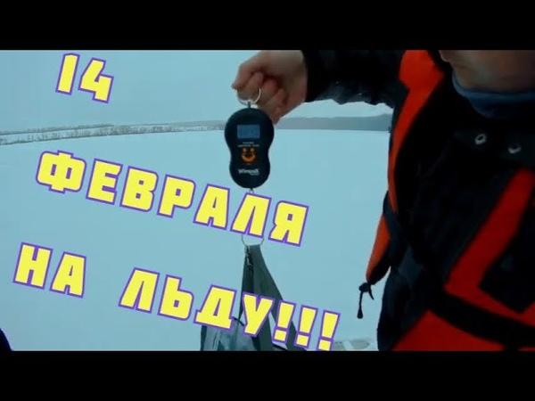 Зимняя рыбалка на окуня День влюбленных на льду Крупный окунь Winter fishing. RtM step 1.