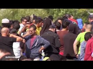 Zur Aufenthaltsermittlung ausgeschrieben- Polizei sucht nach hunderttausenden vermissten Ausländern