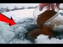 Секретная зимняя прикормка О ней точно никто не знает Подводная съемка