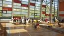 Выставка собак BIS PAPPY