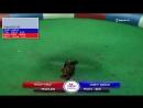 20180811_30 Rocky Cruz vs Jose F. Garcia Puerto Rico