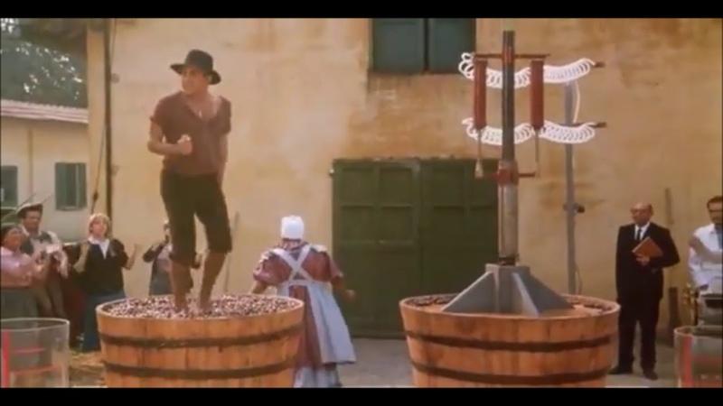 Grape Stomp Adriano Celentano The Taming of the Scoundrel (Il Bisbetico Domato)