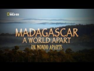 Madagascar Un Mundo Aparte 1999 [720]latino