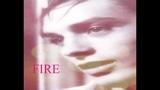 Alain Delon - Fire (by Storm Large) with lyrics