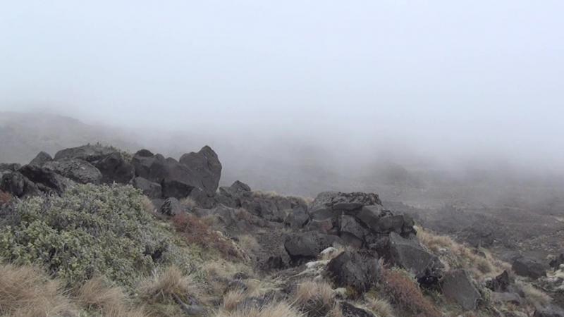Новая Зеландия Забытый рай New Zealand The Forgotten Paradise (Аттила Тенки Attila Tenki)