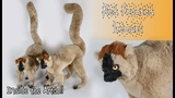 Red Fronted Lemurs - Artdoll
