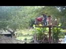 Саратовский Тарзан в Абхазии
