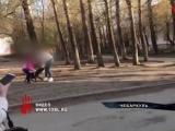 Хозяйку пса, который рстерзал кошку на глазах детей, увезли в полицию.