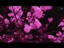 Boiler Room - Ryuichi Sakamoto presents: Poetry of Banality