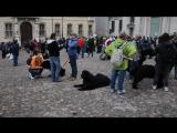 Raduno Terranova Autunno 2016 - Mantova - In Piazza 720p