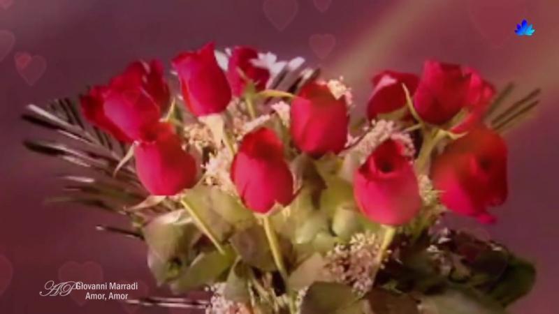 ✿ ♡ ✿ GIOVANNI MARRADI - Amor, Amor