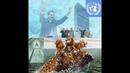NWO - Versklavung der Menschheit schreitet voran - EU - Italien - Russland 2018