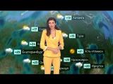Погода сегодня, завтра, видео прогноз погоды на 7.8.2018 в России и мире