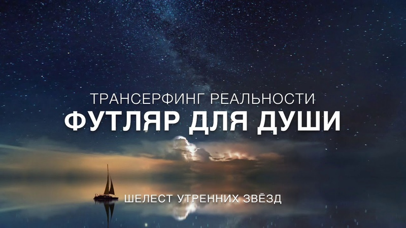 Вадим Зеланд. Футляр для души. Трансерфинг.