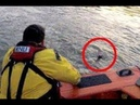 Lifeboat crew save man struggling to stay afloat on the Thames