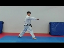 Wave-like way of movement(Sine Wave ) when performing shock action in Taekwon-do (ITF).