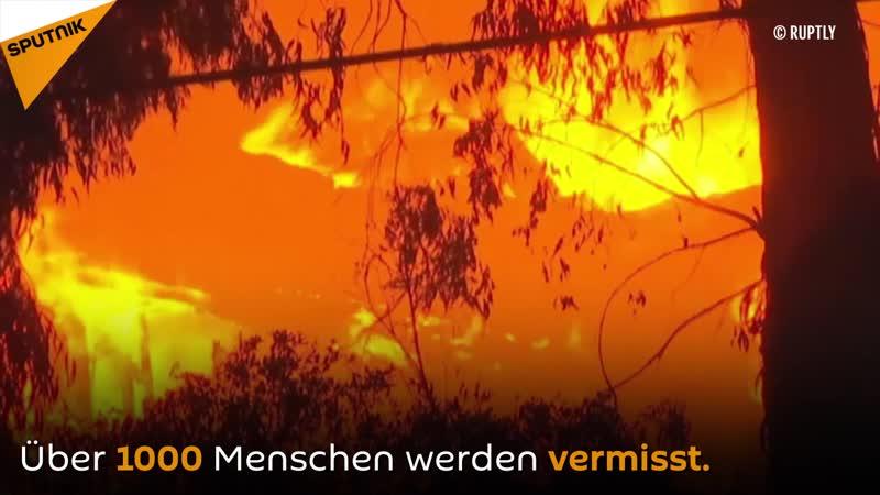 Waldbrände in Kalifornien: Über tausend Menschen vermisst, Opferzahl steigt