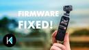 DJI Osmo Pocket - UPDATE Better AF, Audio, and 120fps!