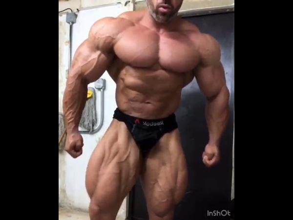 PUERTO RICAN MUSCLE STRIKES AGAIN !