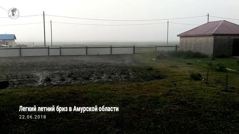 Лёгкий летний бриз в Амурской области