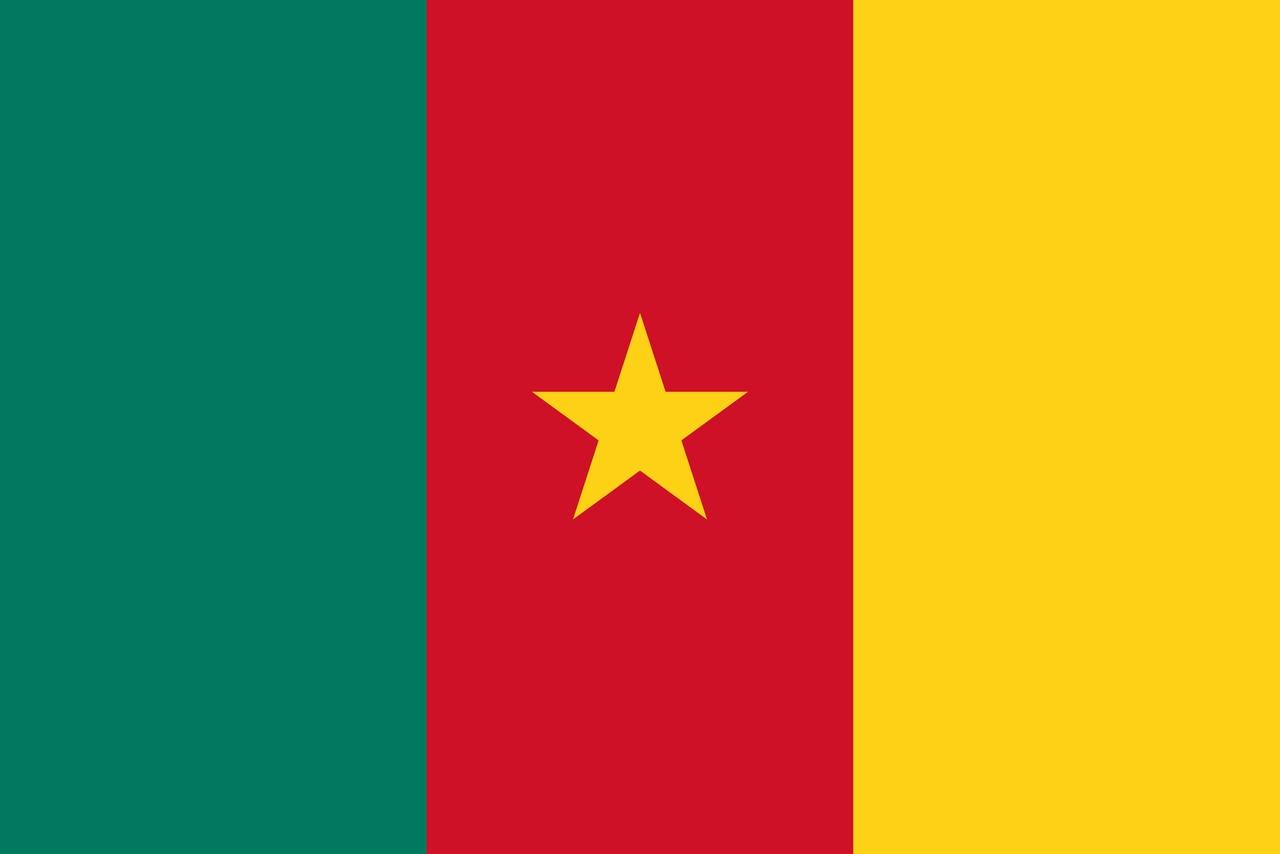 Флаг Камерун