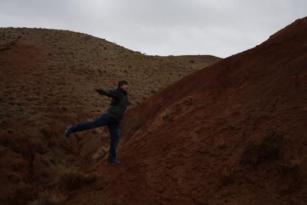 Фирменная Алтайская ласточка на Марсе.