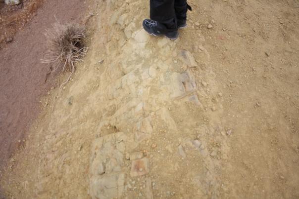 Слева, в русле пересохшего горного ручья фиолетовый камень.