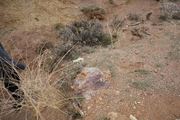 И вот ещё один фиолетовый камень. Настоящий камень, даже текстура у него сильно отличается.
