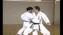 Karate Kihon Ippon Kumite 12 16