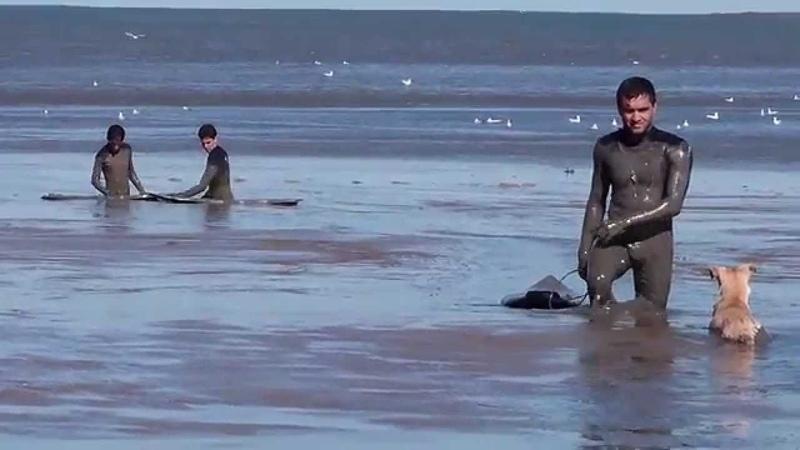 Surfistas ficam atolados na praia do cassino...
