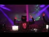 Black Tiger Sex Machine x YOOKiE - Lions