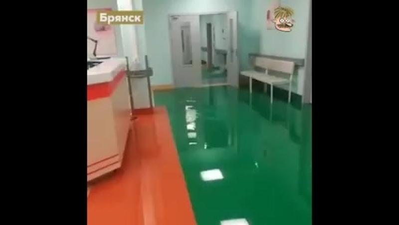 Потому что перинатальный центр, который открывал Путин - это не сам Путин. И над ним никто зонтик не держал