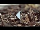 Kirill Zeynalov Autumn EP Teaser 2018