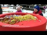 Мегаполис - Фестиваль шоколада - Нижневартовск