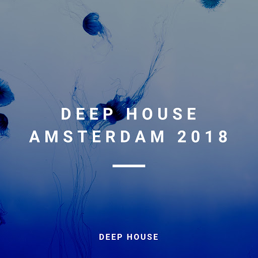 Deep House альбом Deep House Amsterdam 2018 (89 Deep, Deep Techno Traxx)