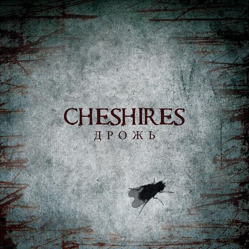 Cheshires альбом Дрожь