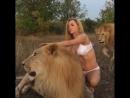 Катя Самбука снялась в нижнем белье со львами