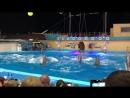 Дельфинарий в Архипо-Осиповке 👍👍👍