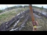 Охота с луком на медведя (естественный отбор)