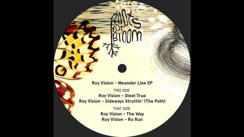 Roy Vision - Steel True