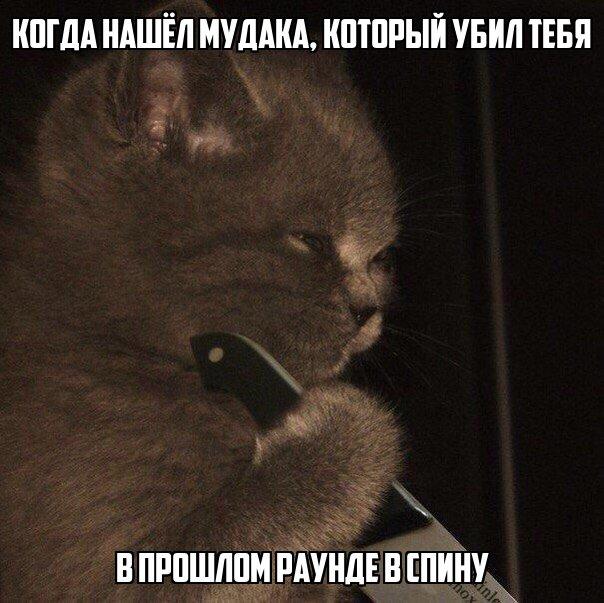 pXEUsxk4jK0.jpg